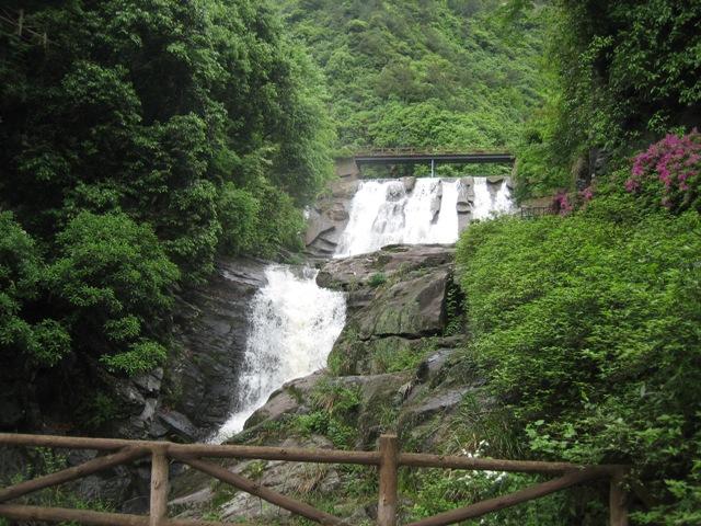 zhongyin012.JPG